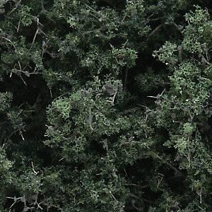 Bilde av Løvtrær og busker mørk